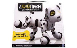 boite-zoomer-dalmatien