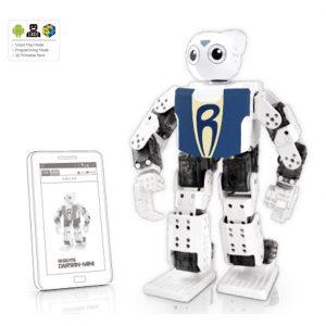 mini-robot-programmable